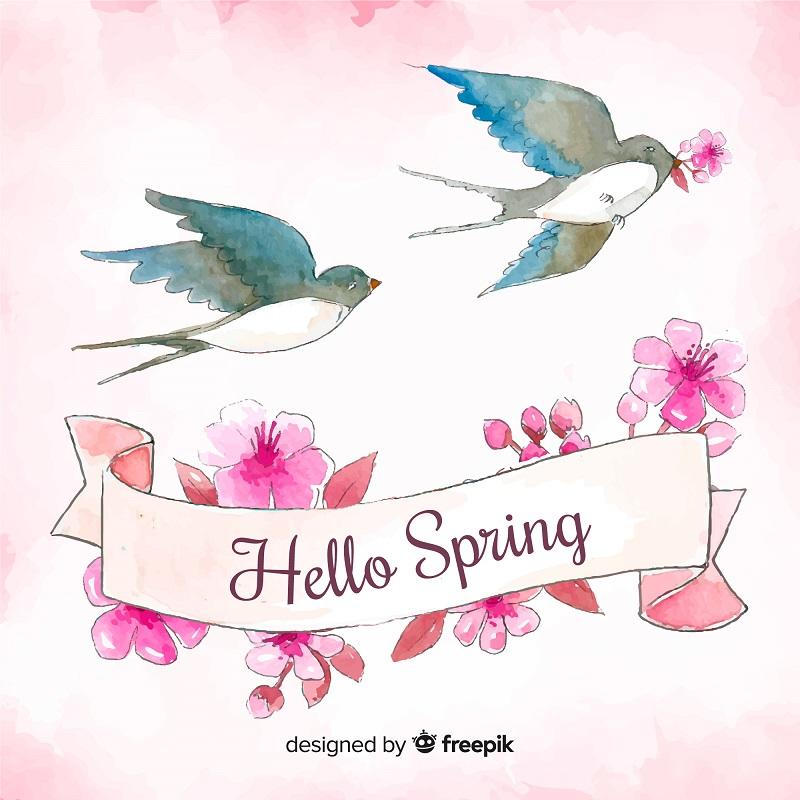 """Deux hirondelles, des fleurs de cerisier, """"Hello spring"""""""